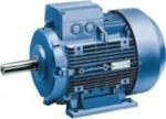 1LA9 Electric Motor