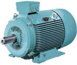 1LG4 Electric Motor