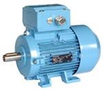 1MA7 Electric Motor