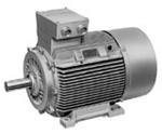 1MJ7 Electric Motor