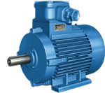 AOM Electric Motor